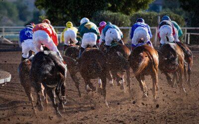 Prop Trading, Sports Trading & Edge Alerter